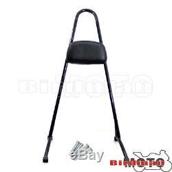 Classic Detachable Backrest Seat Sissy Bar For Harley Sportster XL883 1200 04-17