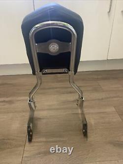 Genuine Detachable Backrest Sissy Bar & Pad For Harley Davidson Sportster XL