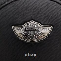 Harley-Davidson Softail OEM Back Rest Sissy Bar 100 Year Anniversary 1903-2003